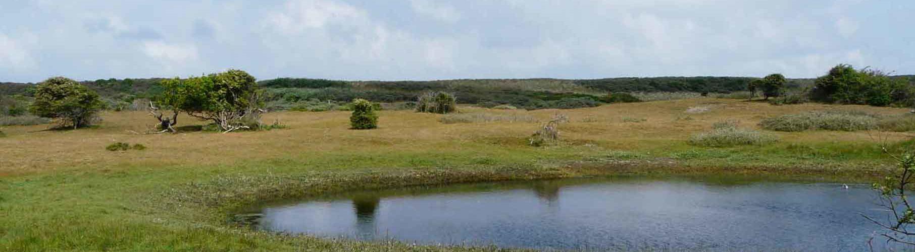 Natuurcollectief Zeeland Landschap